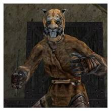 http://lord-of-light.narod.ru/project_of_my_site/tes_3/role_system/khajiit.files/image002.jpg